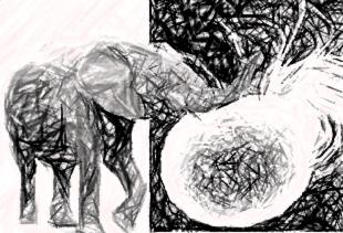 On elephants and bacteria